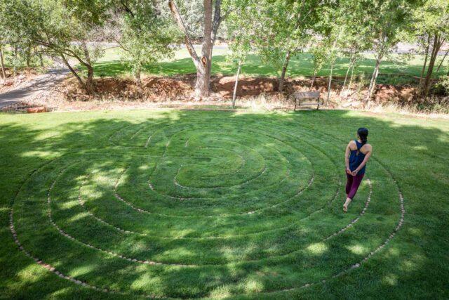 woman walking in a green grass maze