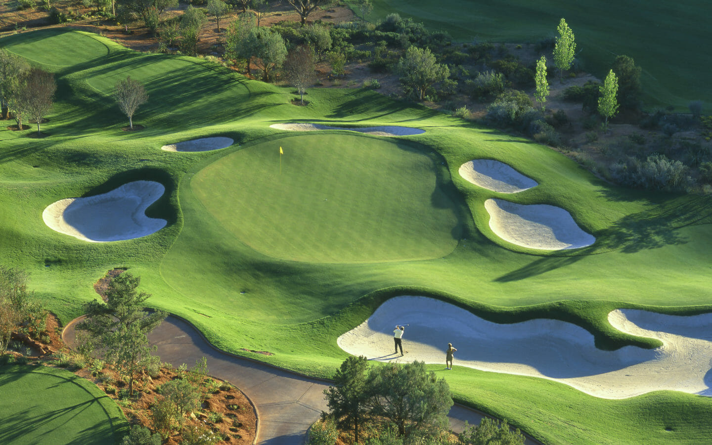 aerial view of a golf green surrounded by trees