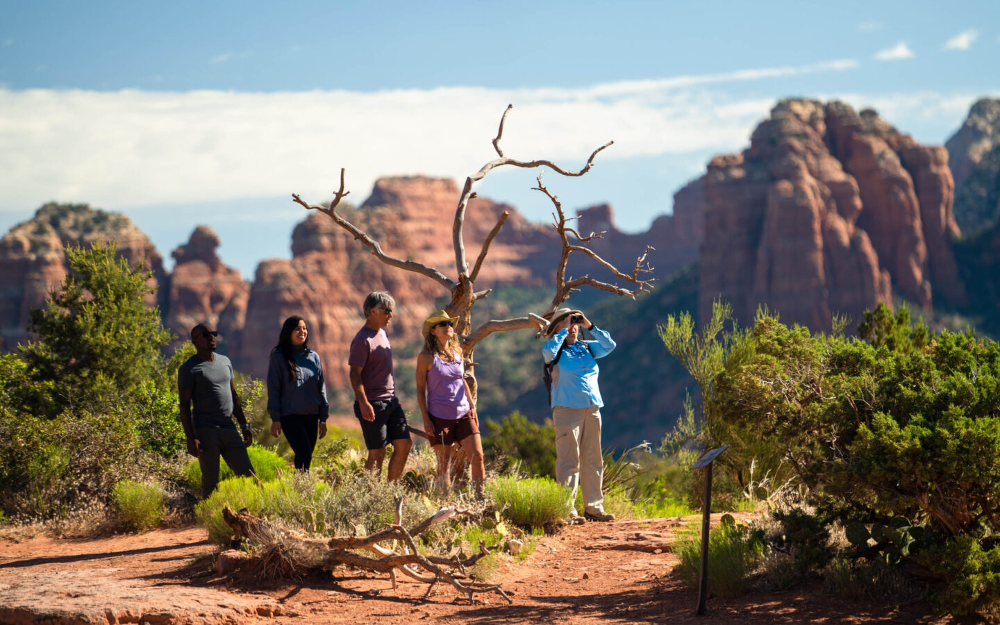 four people on a hike in a canyon with a tour guide