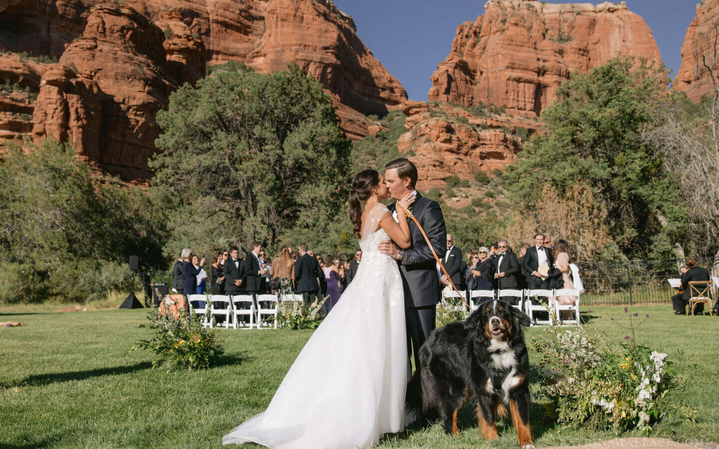 Bride and Groom with Dog after wedding ceremony