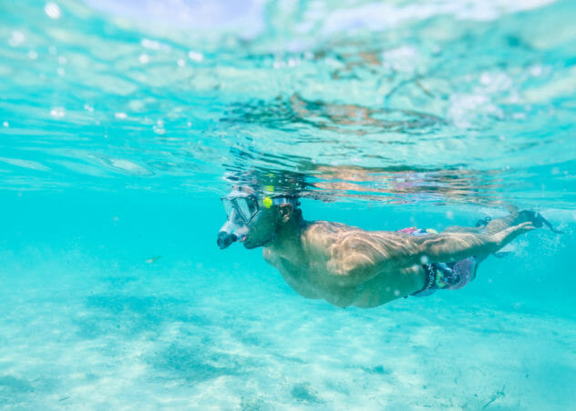 Snorkeling in The Bahamas | Cove Eleuthera