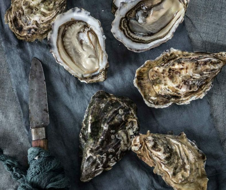 Chesapeake Bay Oyster Restaurant | Tides Inn