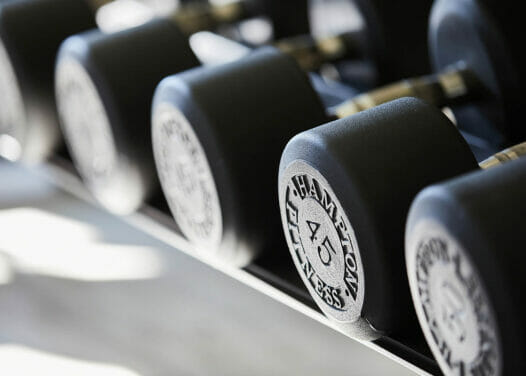 sets of large weights on rack in fitness room