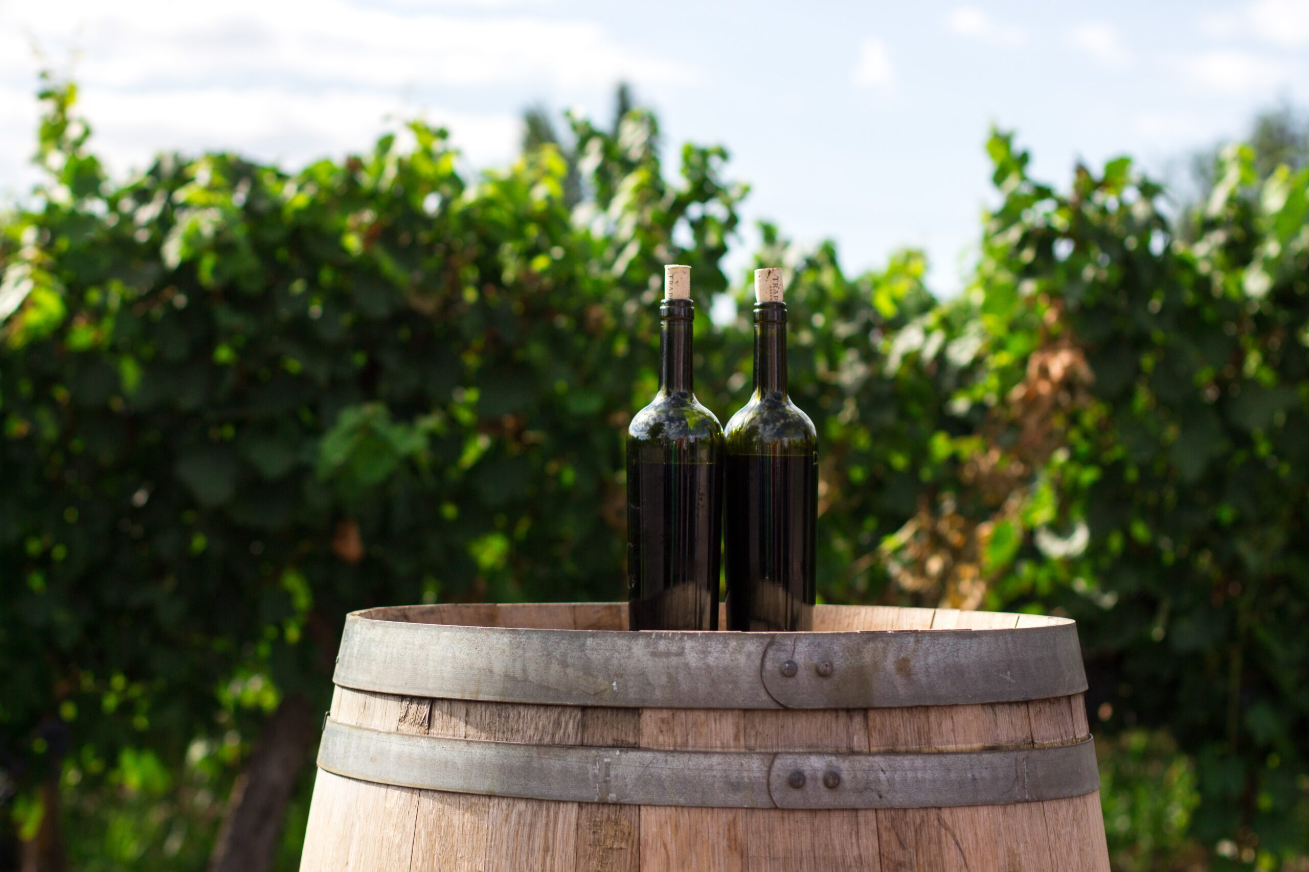 two bottles of wine on top of a barrel in a vineyard