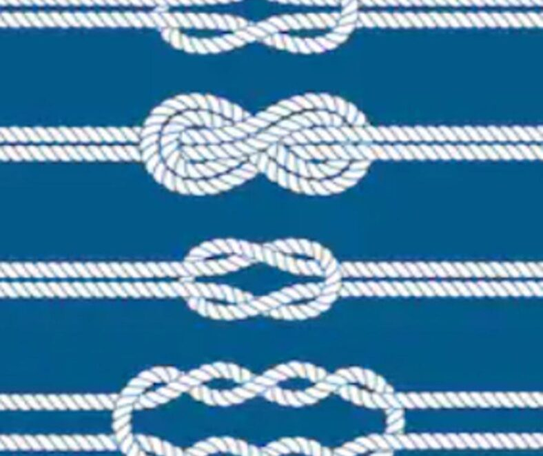 Diagram of four types of knots